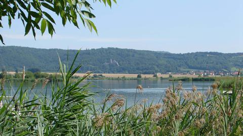 Blick vom Ufer auf das Panorama am Werratalsee