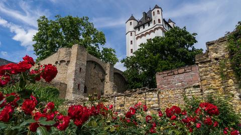 Eltville Kurfürstliche Burg