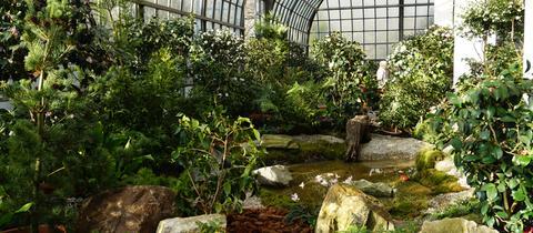 Blick ins Ausstellungshaus des Frankfurter Palmengarten