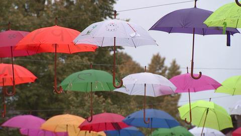 Die Schirme hängen noch bis zum 23. September.