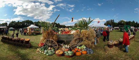 Erntewagen Laurentiusmarkt
