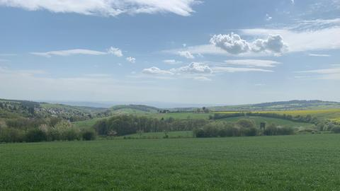Blick über den Rheingau