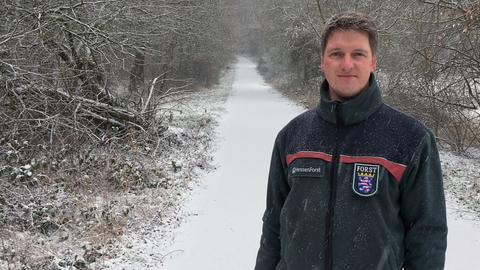 Stefan Ambraß, Leiter des Forstamts Wetzlar.
