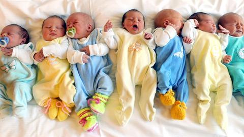 Sieben Babys liegen nebeneinander.
