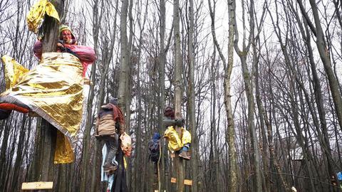 Goldene Rettungsfolien wärmen Waldbesetzer auf Bäumen