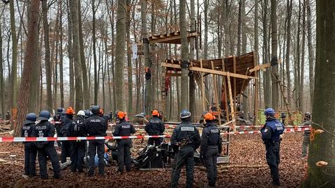 Ein Bagger reißt ein Baumhaus ein.