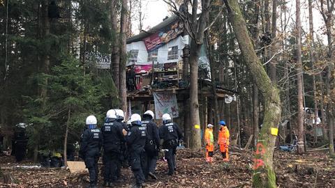 Ein Baumhaus wird geräumt.