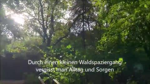 Orte der Freiheit - Screenhots