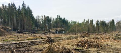 Ein verfallenes Gebäude inmitten einer gerodeten Waldfläche.