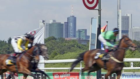 Pferde auf der Rennbahn.