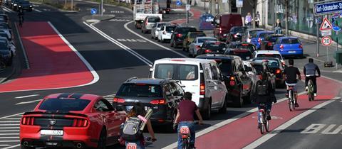 Einige Fahrradfahrer fahren neben Autofahrern