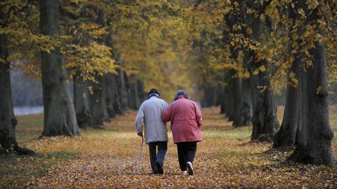 Ein älteres Paar geht auf einer Allee spazieren