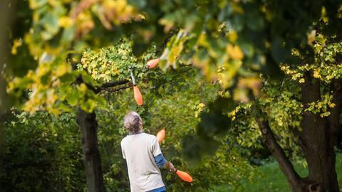 Jongleur im Günthersburgpark in Frankfurt