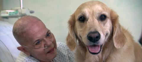 Therapiehündin Vitesse sitzt im Bett von Patientin Monika Schenk