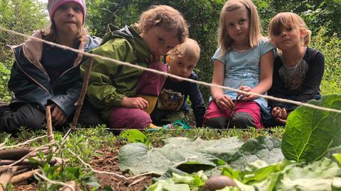 Kinder im Wald füttern eine Schnecke