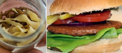 Collage Mehlwurmburger, Würmerglas