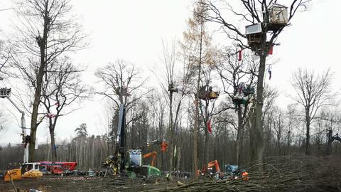 letzte Baumhäuser im Dannenröder Forst