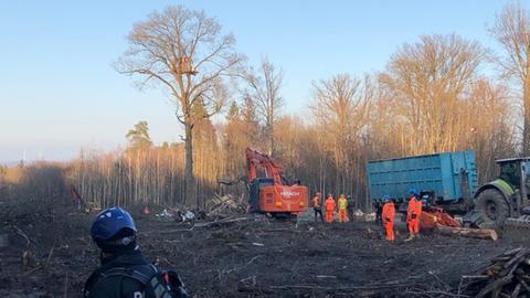 Letzter Baum auf Rodungstrasse in Dannenröder Forst gefällt