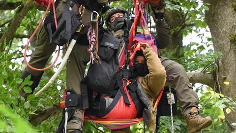 Aktivistin im Baum - Maulbacher Wald