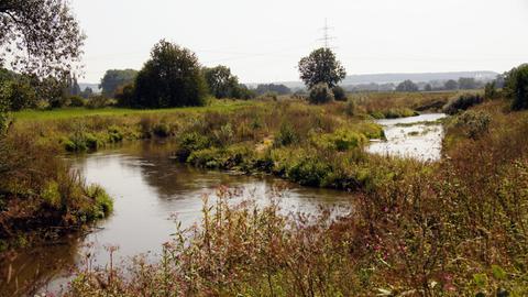 Renaturierung der Nidda, Bad Vilbel - Gronau