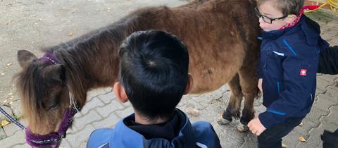 Pony Sandy mit Mert und Jonas
