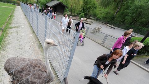 Philosophenweg Opel-Zoo