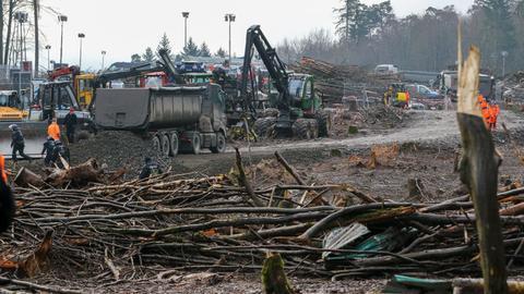 Rodungsarbeiten im Dannenröder Forst