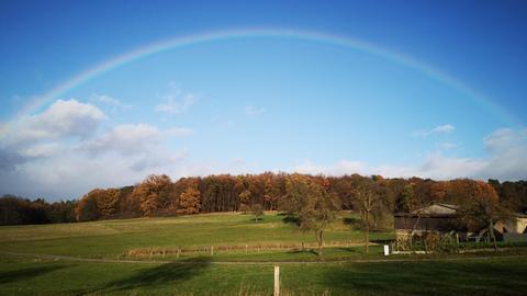 Regenbogen über dem Dannenröder Forst