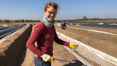 Unsere Reporterin Anna Vogel beim Spargelstechen