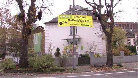 Aktivisten der Umweltschutzorganisation Robin Wood besetzen vor der Parteizentrale der hessischen Grünen in Wiesbaden zwei Bäume.