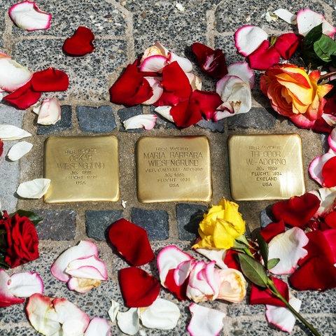 Stolpersteine vor dem Haus der Familie Wiesengrund-Adorno