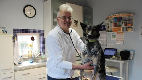 Tierarzt Gerhard Wagner kümmert sich um große und kleine Tiere in seiner Praxis in Reichelsheim.