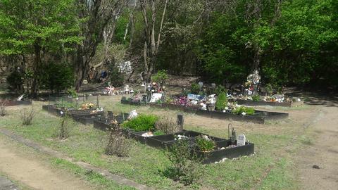 Gräber auf Tierfriedhof