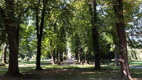 Parkanlage der Villa Meister in Frankfurt