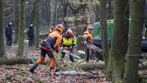 Waldarbeiter im Dannenröder Forst