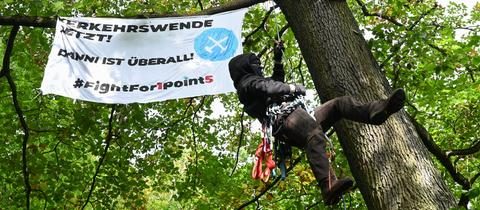 Eine Aktivistin klettert in einem Wald auf einen Baum.