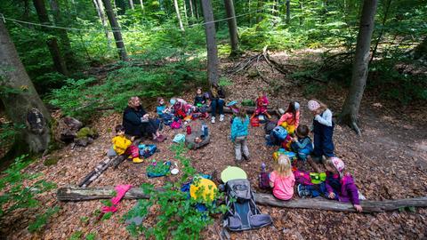 Kinder beim Picknick im Wald.