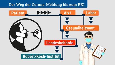 Der Weg einer Corona-Meldung bis zum RKI