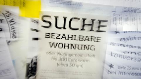 """Eine Suchanzeige für eine """"bezahlbare Wohnung"""" hängt in Frankfurt in der Goethe-Universität an einem schwarzen Brett"""