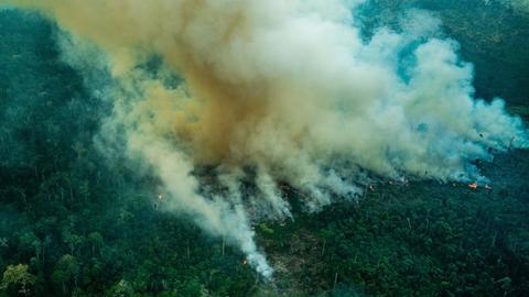 Amazonas Brände