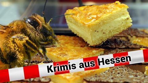 Biene auf Bienstich