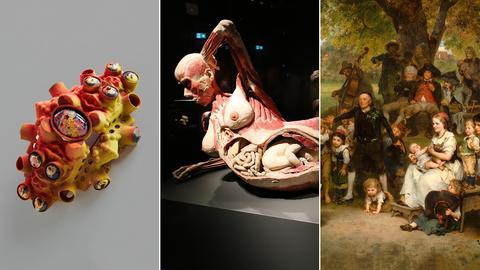 """Drei Ausstellungen werden mit drei Fotos vorgestellt: Ein Ring der Schmuckdesignerin Wiedenbach, ein Ganzkörperplastinat von """"Körperwelten"""" und ein Kunstwerk von Ludwig Knaus"""