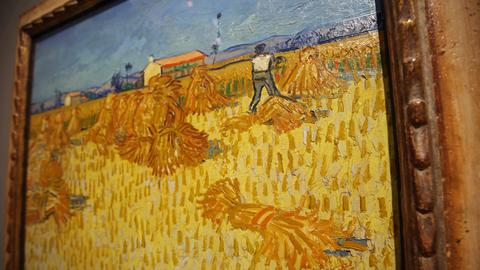 Bilder van Gogh