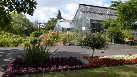Ein Gewächshaus im Botanischen Garten in Marburg