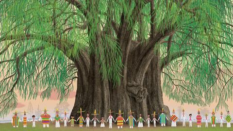 """Illustration aus """"Bäume"""" von Piotr Socha und Wojkiech Grajkowski"""