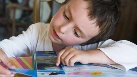 Junge liest interessiert in einem Buch