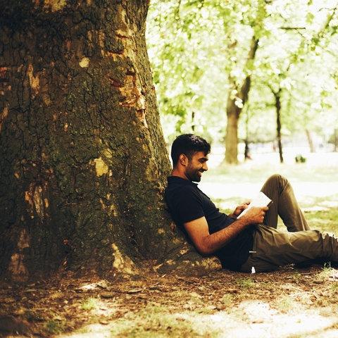 Mann liest ein Buch im Grünen am Baum