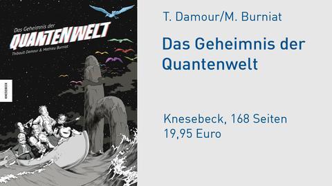 Das Geheimnis der Quantenwelt Comic Cover