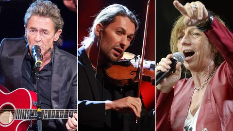 Collage aus: Peter Maffay David Garrett Gianna Nannini