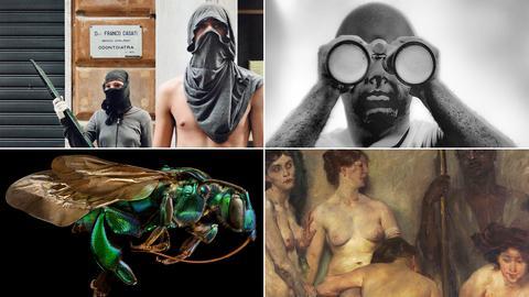 Collage mit Fotos aus Ausstellungen, die im Mai starten